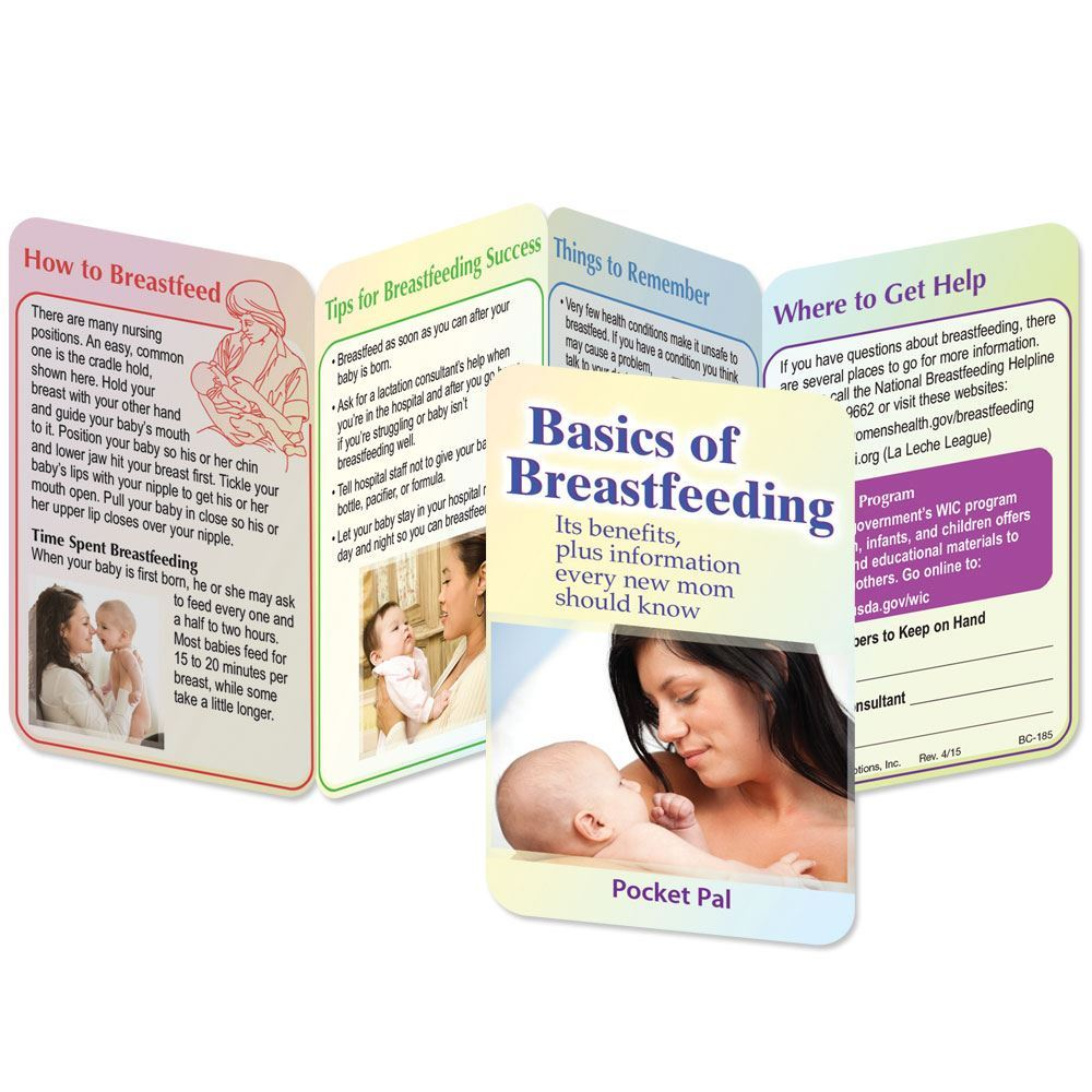 Basics Of Breastfeeding Pocket Pal - Personalization Available
