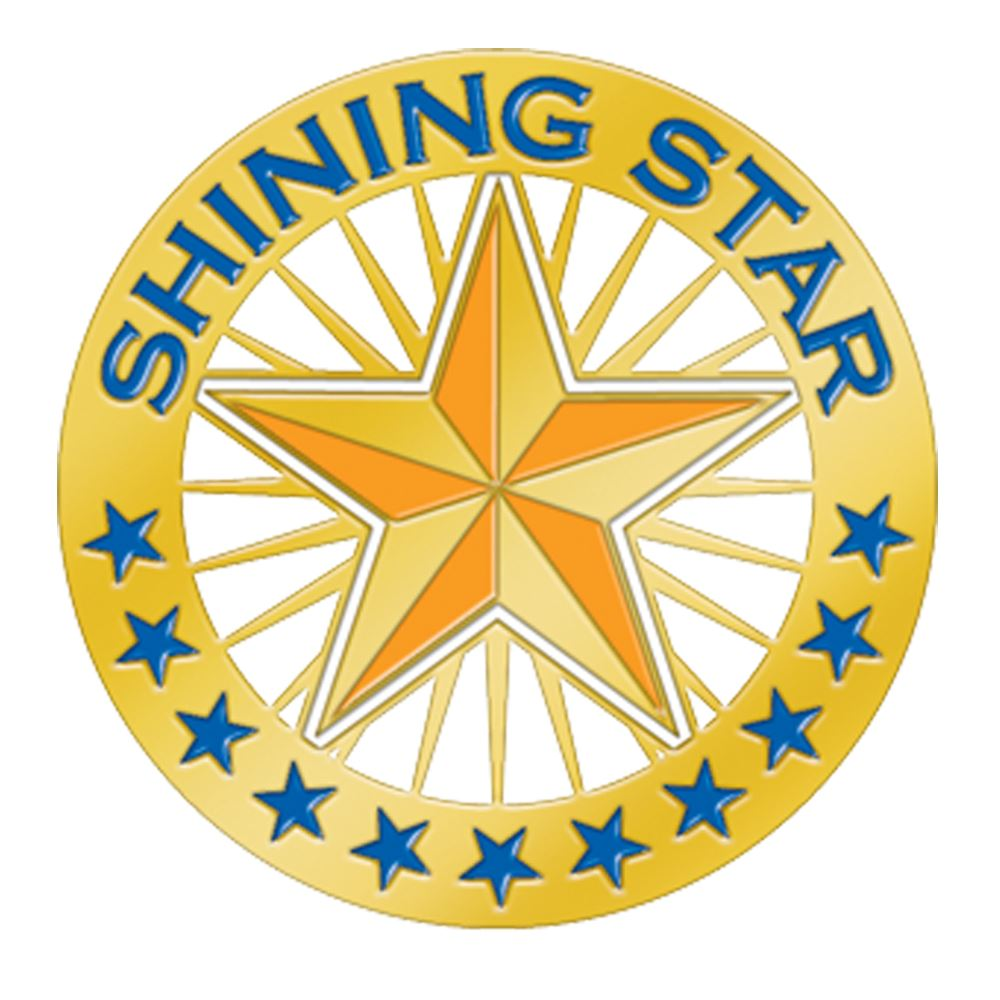 Shining Star Round Lapel Pin With Presentation Card