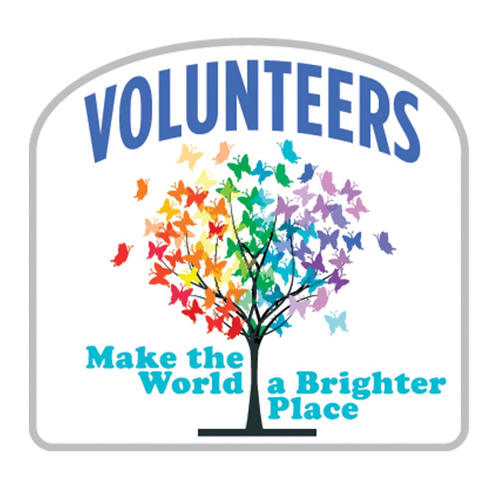Volunteers make the world a brighter place lapel pin with volunteers make the world a brighter place lapel pin with presentation card xflitez Images