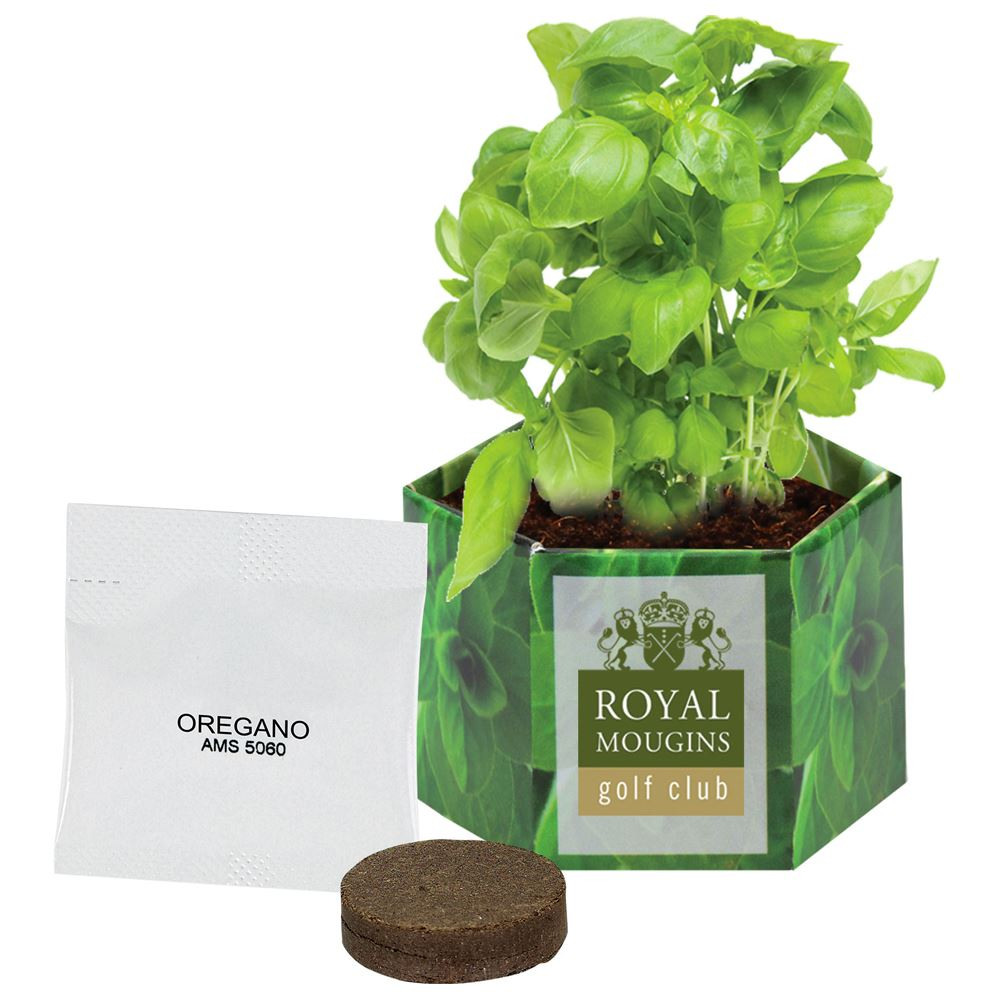 Planter Pop Up Kit