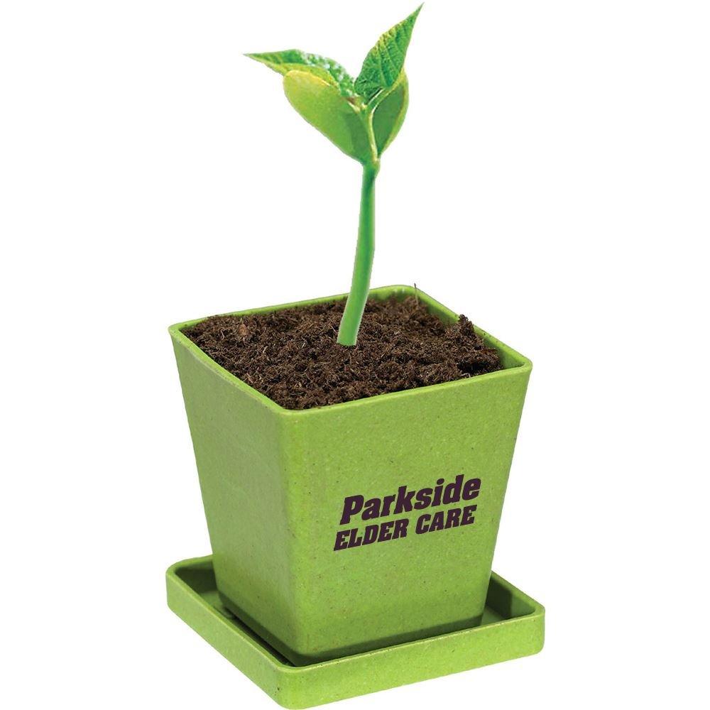 Mini Bamboo Planter - Personalization Available