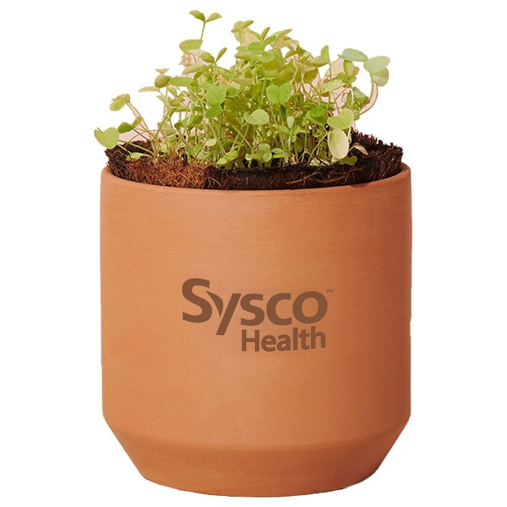 Modern Sprout Tiny Terracotta Grow Kit Good Luck Clover