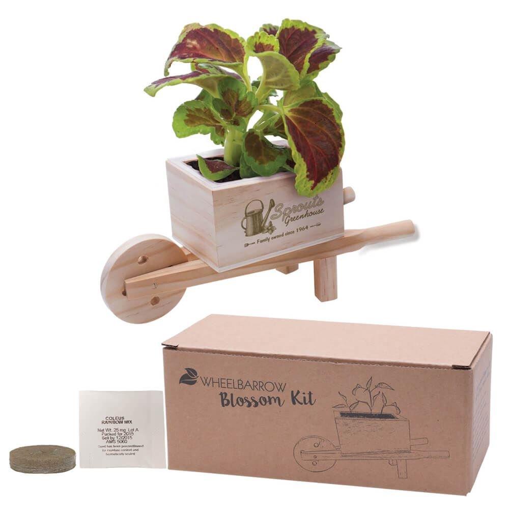 Wooden Wheelbarrow Blossom Kit - Personalization Available