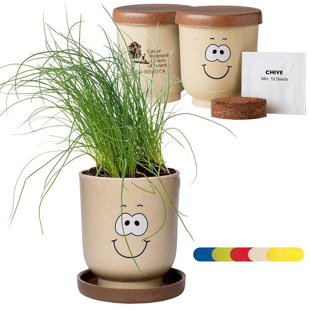 Goofy Grow Pot-Eco Planter Chives