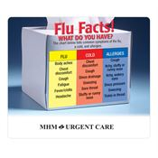 Flu Facts! Magnet - Personalization Available