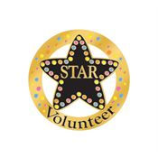 Star Volunteer Lapel Pin With Presentation Card