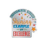 Environmental Services: A Shining Example Of Excellence Lapel Pin With Presentation Card