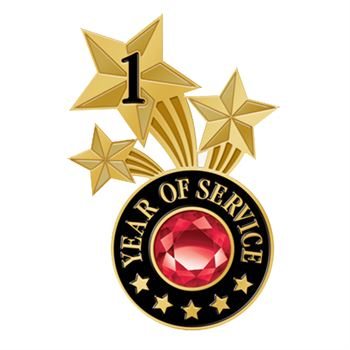 1 Year Of Service Triple Star Lapel Pin With Jewel Box