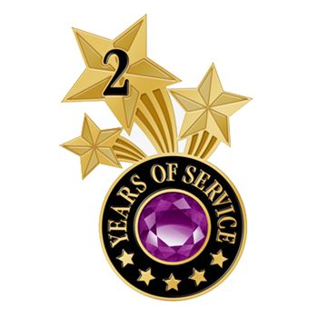 2 Years Of Service Triple Star Lapel Pin With Jewel Box