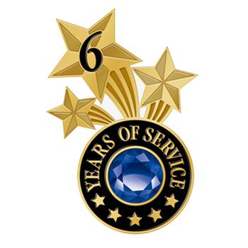 6 Years Of Service Triple Star Lapel Pin With Jewel Box