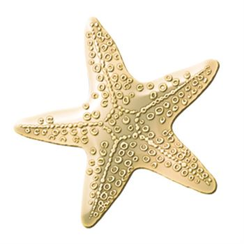 Starfish Lapel Pin With Presentation Card