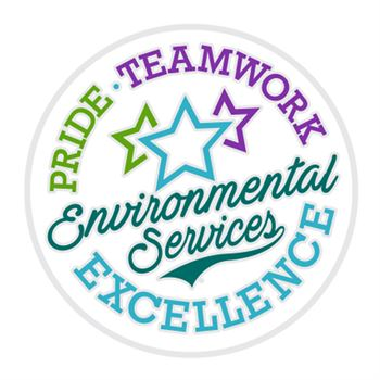 Environmental Services: Pride, Teamwork, Excellence Lapel Pin With Presentation Card