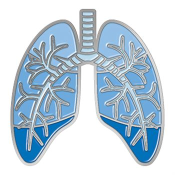 Lungs Lapel Pin With Presentation Card