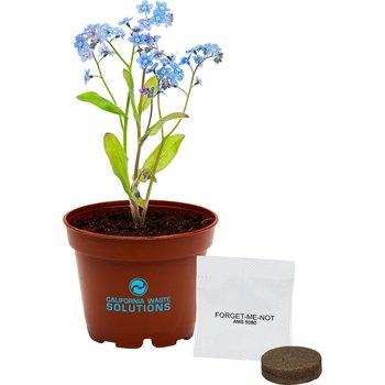 Terra Cotta Petite Planter Kit