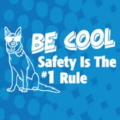 Be Cool Safety Is The #1 Rule Theme from Positive Promotions