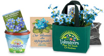 volunteer appreciation, volunteer recognition gardening gifts, blossom kits, seed packets.