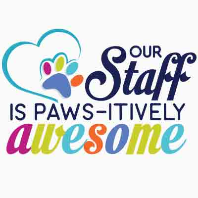 Our Staff Is
